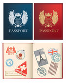 Designs for a general not country specific passport — 图库矢量图片