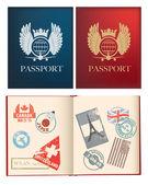 为一般设计不国家特定的护照 — 图库矢量图片
