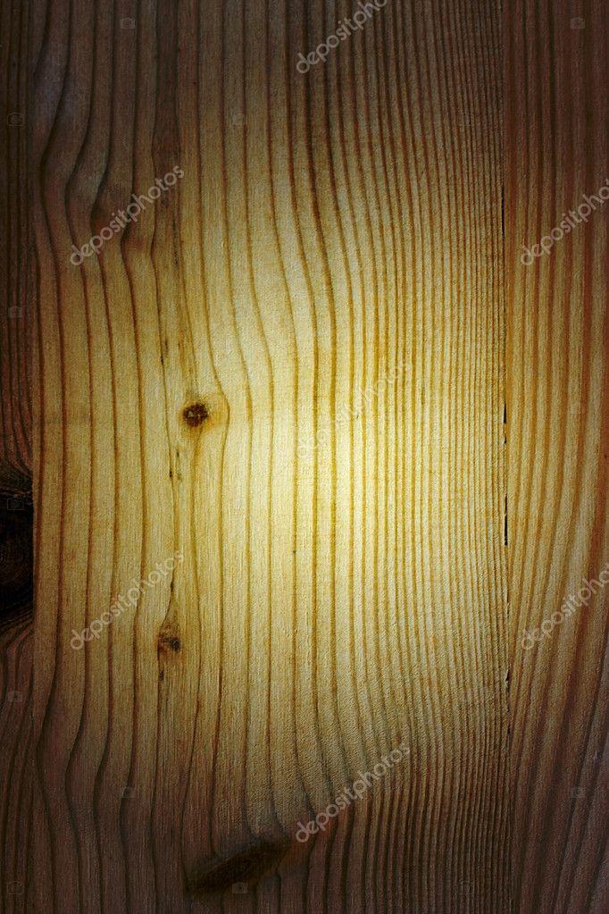 松树木材纹理— photo