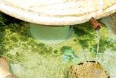 Marble fontaine at Castelo de Vide village. — Stock Photo