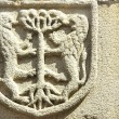 Medieval blazon in old door,Portugal. - 图库照片