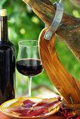 Spanish Jamon and red wine. — Stock Photo