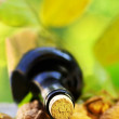 Bottle of wine and wallnuts. — Stock Photo #7310283
