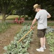 Tending the garden — Stock Photo