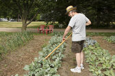 Tending the garden — Foto Stock