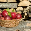 Picked apples in basket — Stock Photo