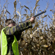 Fall bird hunter in a corn field — Stock Photo