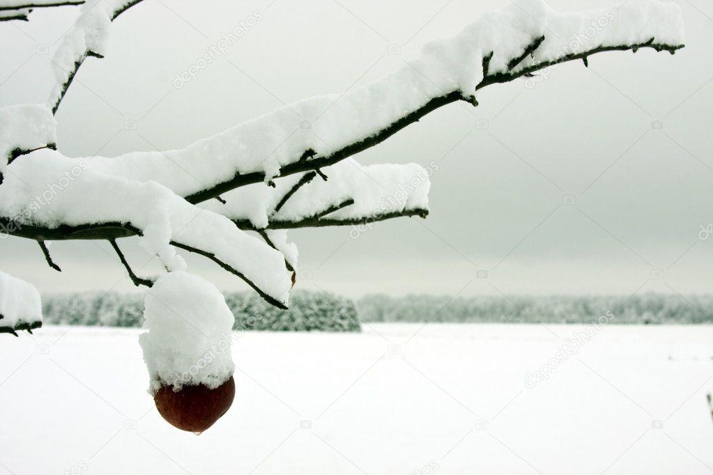 Snowflakes - en snøstorm av en spilleautomat