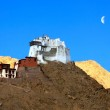 Landscape with fort and Namgyal Gompa on mountain. Leh — Stock Photo