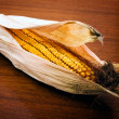 Corn ear - Stock Photo