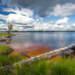 Summer scene, finland — Stock Photo