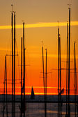 Yachts at sunset — Foto Stock