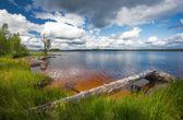 Summer scene, finland — Stock Photo