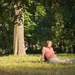 unter den Bäumen — Stockfoto