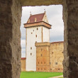 Narva castle - Stock Photo