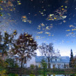Reflection of sky in pond in botanic garden, Tartu, Estonia - Stock Photo