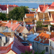 Roofs of tallinn — Stock Photo
