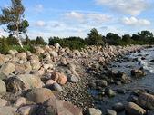 Seashore near tallinn, estonia — Stock Photo