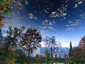 Reflection of sky in pond in botanic garden, Tartu, Estonia — Stock Photo