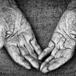 Old woman hands — Stock Photo #7085717