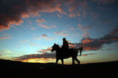Sunset Horserider — Stock Photo
