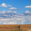 Giant wind turbines on the horizon — Stock Photo