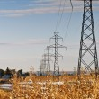 High Power Transmission Lines — Stock Photo