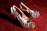 Daring Shoes — Stock Photo