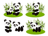 Panda cute set — Stock Vector