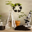 Foto Stock: Plants and laboratory