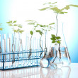 Plants and laboratory — Stock Photo #7138027