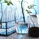 Plants and laboratory — Stock Photo #7138545