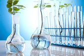 Chemical laboratory glassware equipment, ecology — Stock Photo