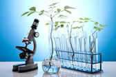 Chemical laboratory glassware equipment, ecology — Foto de Stock