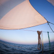 Sun behind white sails — Stock Photo