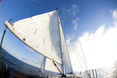 Sun behind white sails — Stock Photo