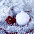 Christmas winter concept -  