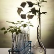 thumbnail of Chemistry equipment, plants laboratory glassware
