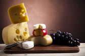 Background of fresh cheese — Stock Photo