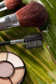 Cosmetica, make-up accessoires — Stockfoto
