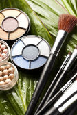 Set of make-up cosmetics — Stock Photo