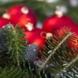 Christmas tree, spruce, baubles - Foto Stock