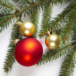 Bauble, Xmas tree - Stock Photo