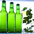 Green bottle of beer — Stock Photo #7385138