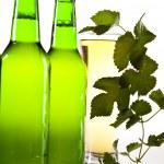 Green bottle of beer  — Stock Photo #7385425