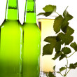 Stock Photo: Green bottle of beer
