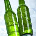 Bottle of beer — Stock Photo