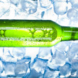 Beer is in ice — Stock Photo #7389087