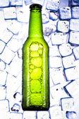 绿色瓶啤酒 — 图库照片