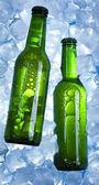Flasche bier — Stockfoto